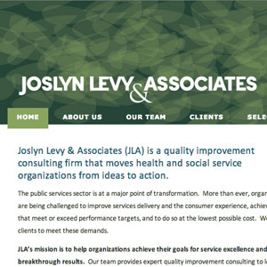 Custom WordPress Theme for Joslyn Levy
